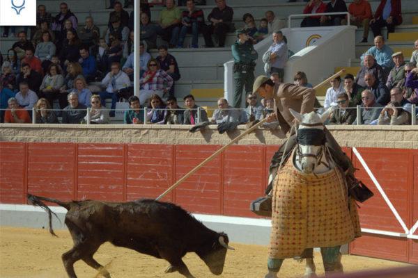 Villaseca de la Sagra convoca su séptimo Alfarero de Plata.