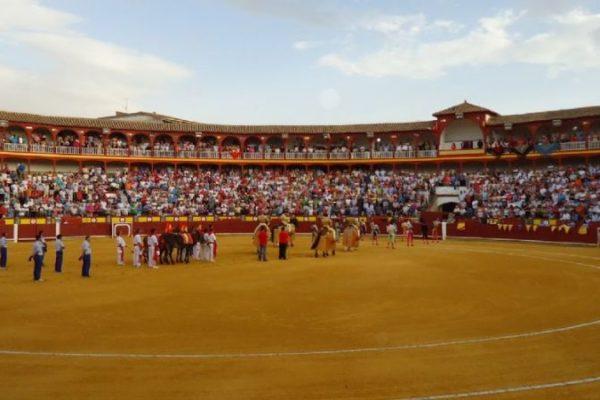 Unidas Podemos pide con una demanda el cierre cautelar de la plaza de toros de Ciudad Real por su estado.