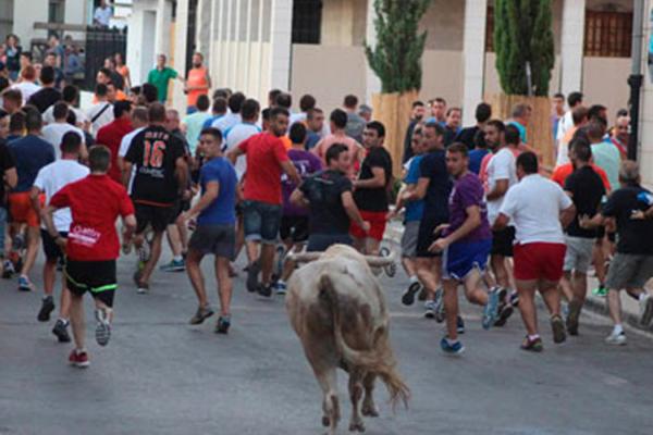 Los alcaldes no pueden prohibir los toros.