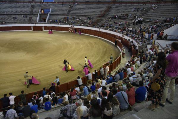 Se suspende el certamen sin caballos de Colmenar Viejo
